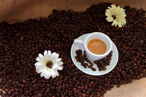 Coffee Shop Poggibonsi foto 15