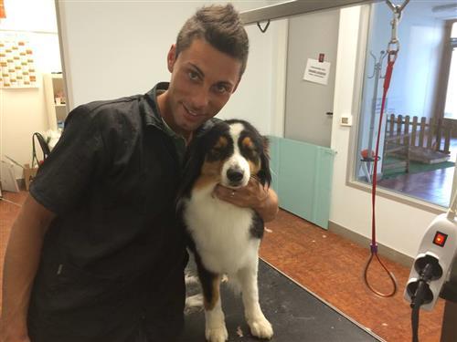 Wellness Dog Udine foto 231
