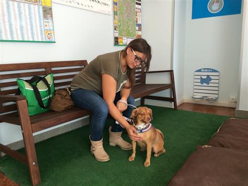 Wellness Dog Udine foto 252