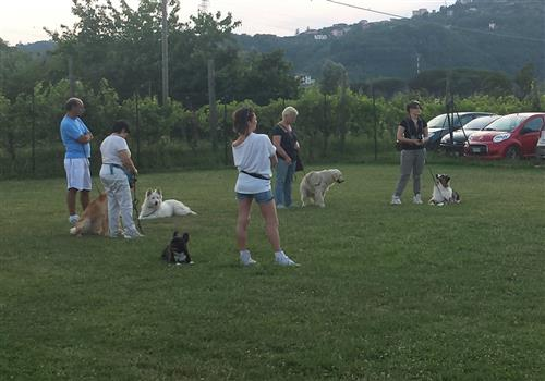 DOUBLE J FOR DOGS Vezzano Ligure foto 16