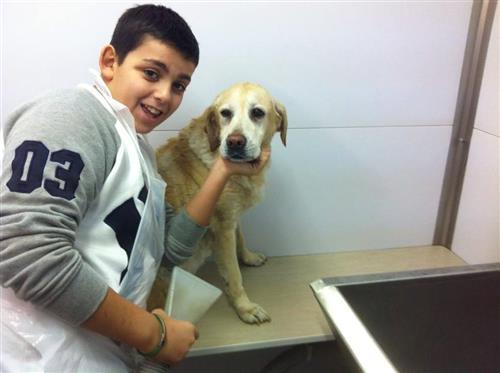 Wellness Dog Udine foto 148