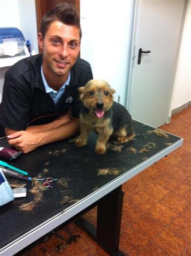 Wellness Dog Udine foto 126