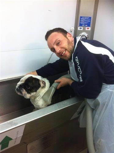 Wellness Dog Udine foto 165