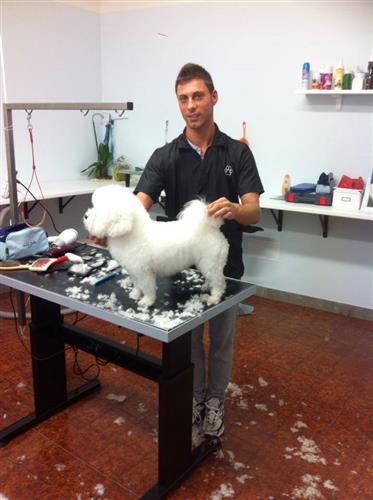 Wellness Dog Udine foto 133