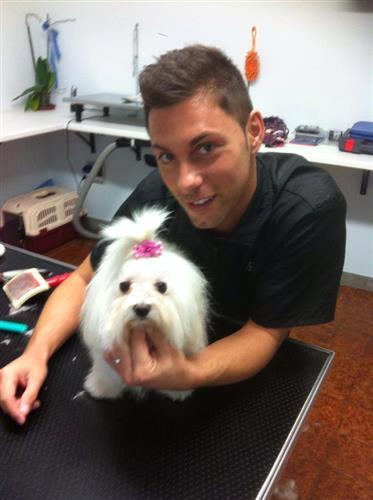 Wellness Dog Udine foto 135