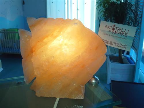 Cristalli di Mare Sesto Fiorentino foto 11