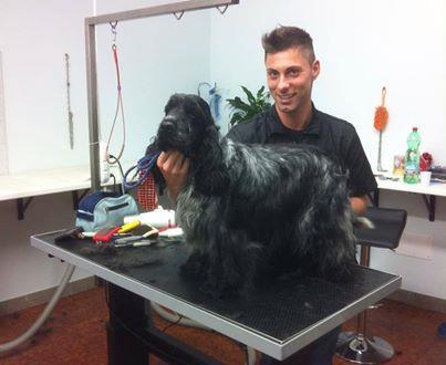 Wellness Dog Udine foto 35