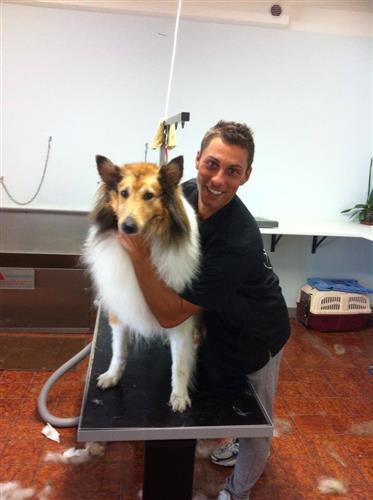 Wellness Dog Udine foto 138