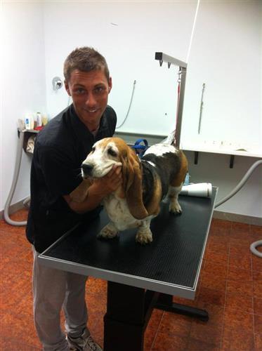 Wellness Dog Udine foto 139