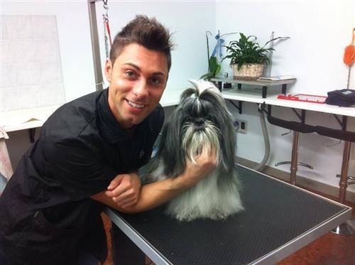 Wellness Dog Udine foto 91