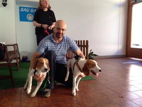 Wellness Dog Udine foto 189