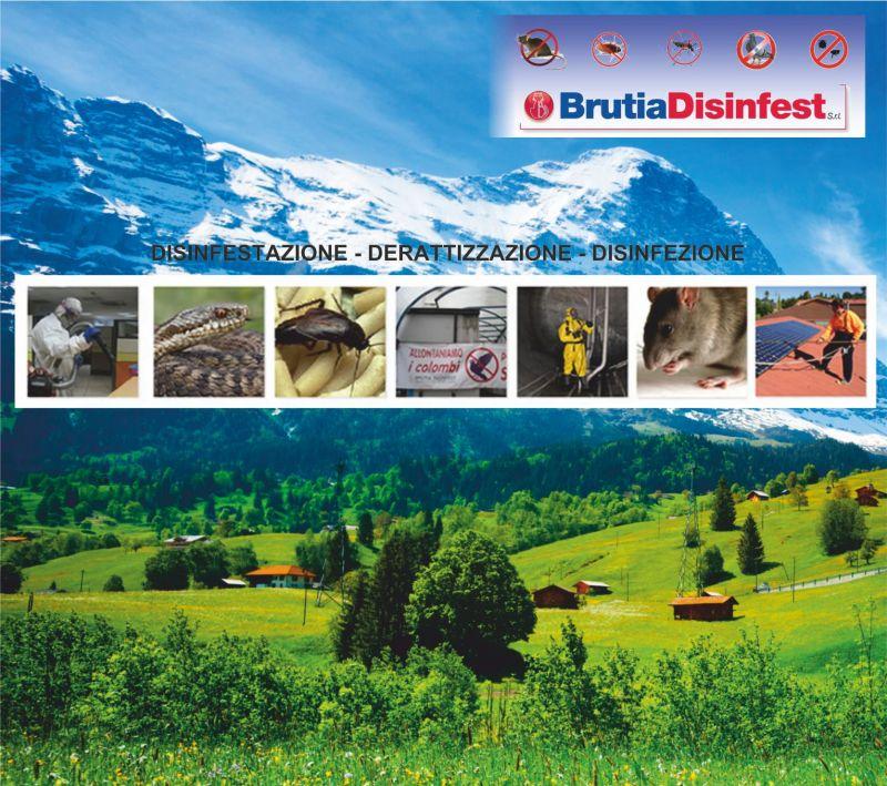 Brutia Disinfest - promozione disinfezione ambiente - offerta disinfestazione agenti infestanti
