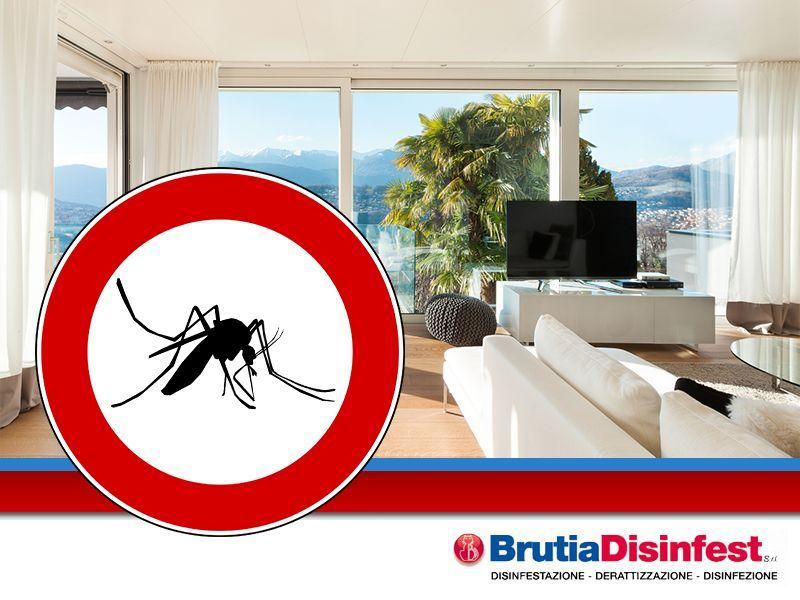 Brutia Disinfest - promozione disinfezione zanzare - offerta disinfestazione insetti