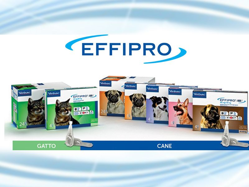 Offerta Antiparassitario Effipro - Promozione Antiparassitario cani e gatti Effipro - Agriverde