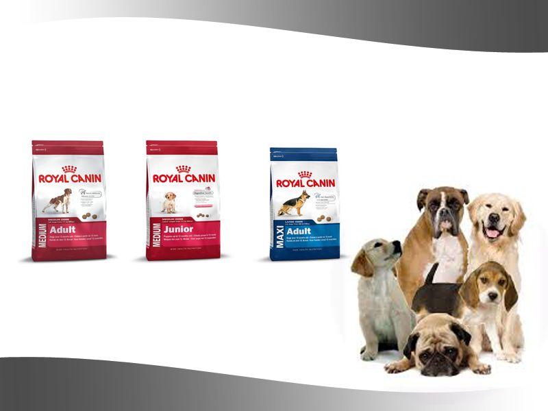 promozione offerta occasione royals canin maxi medium junior paola