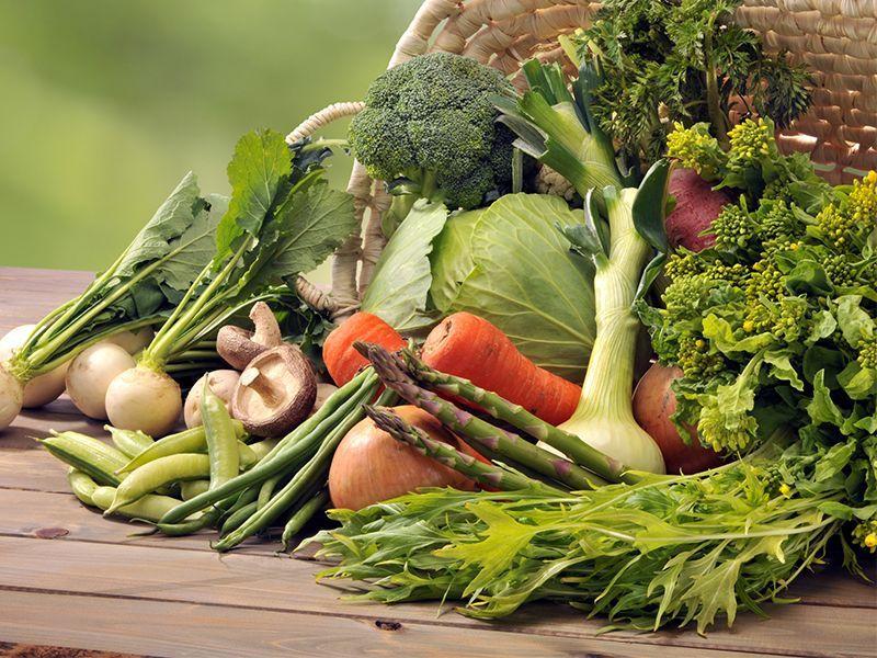 offerta fertilizzanti biologici - promozione prodotti per agricoltura biologica vicenza