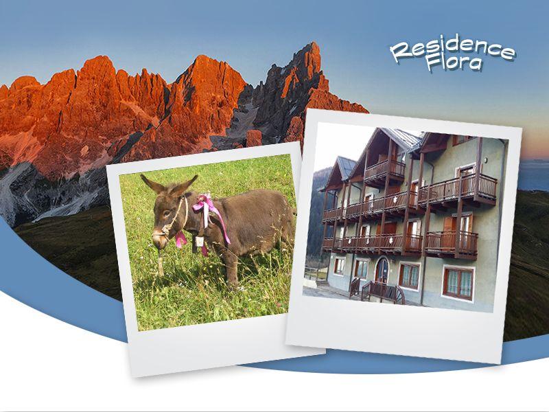 Offerta Week End Siror - Promozione Vacanze Valmesta - Residence Flora