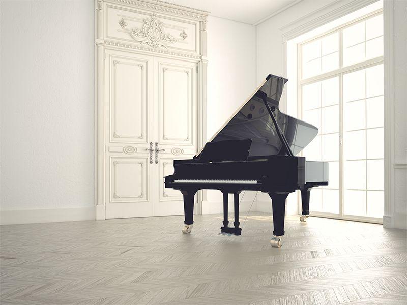 Offerta Assistenza Tecnica Pianoforti - Promozione Pianoforti da Concerto - Acoustic Piano