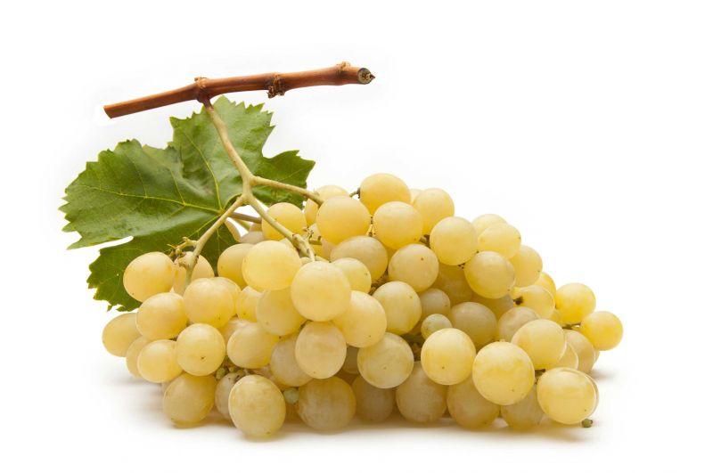 Da Peppe e Lucia trovi dell'uva buonissima in offerta!