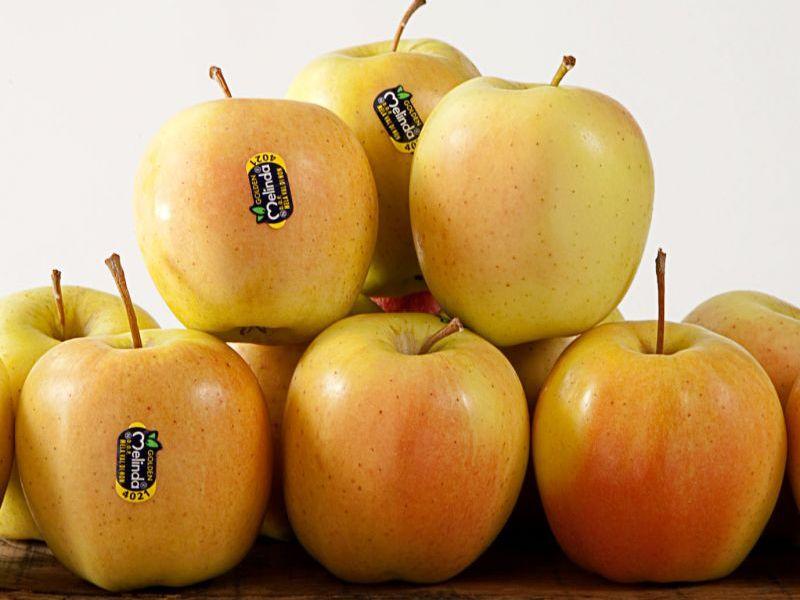 Promozione - Golden Melinda - Offerta Benevento - Occasione mele