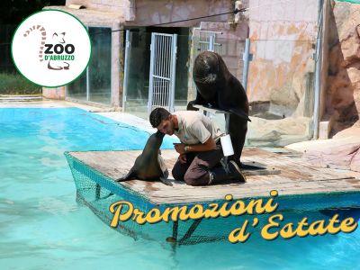 promozione agosto zoo dabruzzo