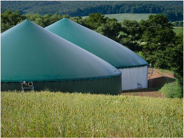 Offerta commercio prodotti per agricoltura biologica - Promozione Verona CDA PUNTO VERDE SRL