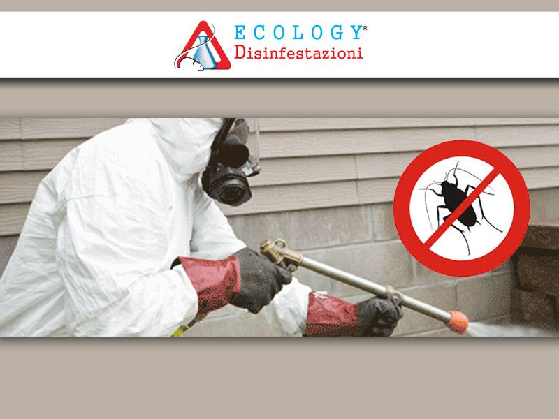 deblattizzazione ecology