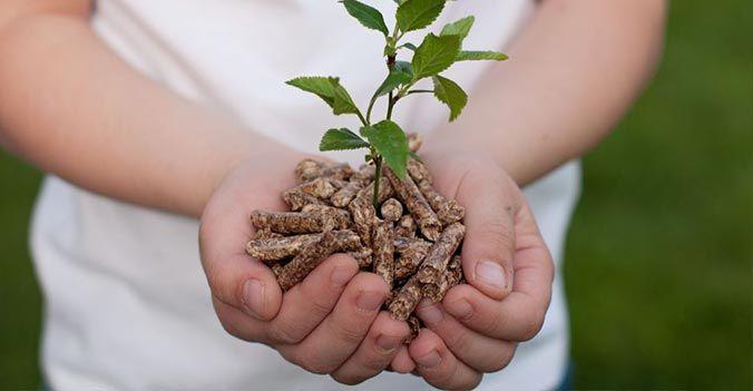 offerta progettazione ed installazione caldaie a biomassa - occasione caldaie biomassa vicenza