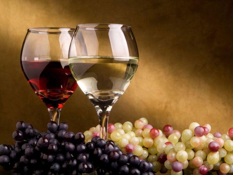 offerta vendita vino e olio dei colli berici produzione e vendita vino dei colli berici