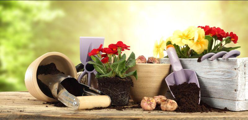 vendita commercio prodotti articoli per lagricoltura valdagno vicenza offerta sconto occasione