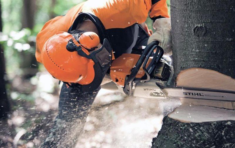consulenza vendita macchinari boschivi e per il giardinaggio valdagno vicenza sconto offerta