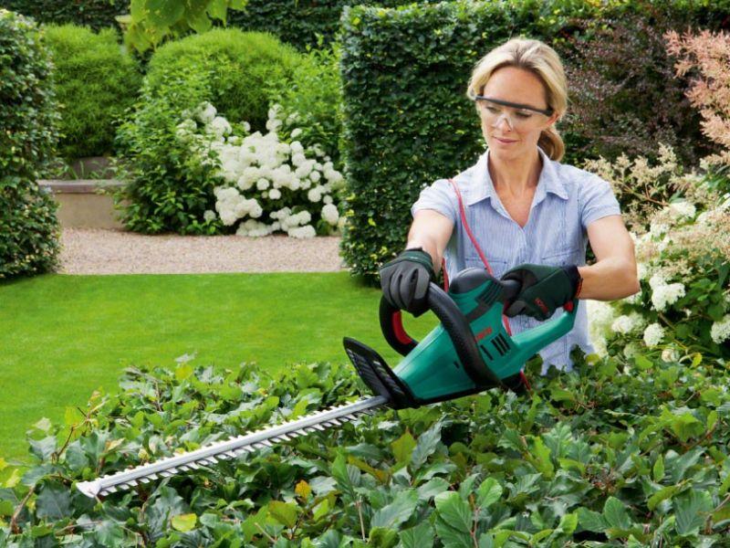 offerta vendita e riparazione tagliasiepi e motoseghe - occasione attrezzature da giardino