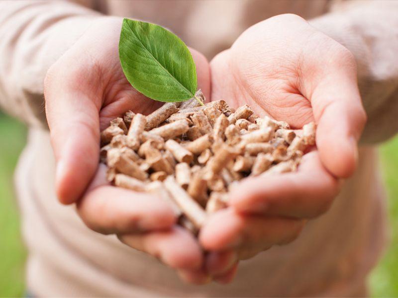 Occasione pellet Feroleto Antico - pellet abete Feroleto Antico - Progetto Legno
