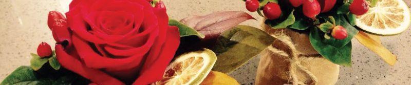 offerta piante stagionali promozione fiori da interno esterno vicenza fioreria toffanello