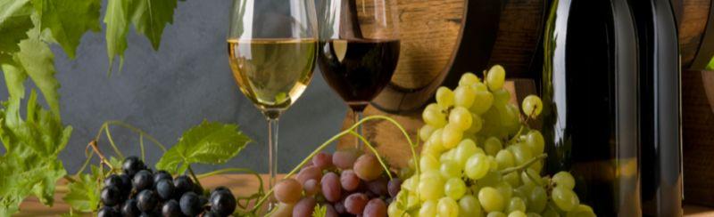 offerta articoli per enologia igene cantina cura del vino agricola gasparoni brogliano vi