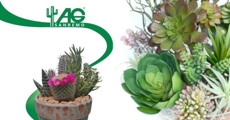 Offerta servizio consulenza piante grasse esposizione solare - Ag Sanremo
