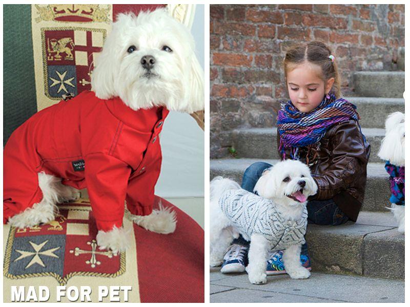Promozione - Offerta - Occasione - Abbigliamento cani Made For Pet - Cosenza