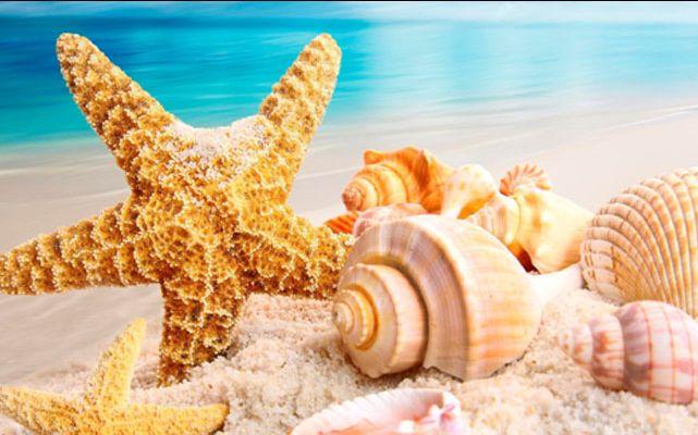 offerta prenotazione viaggi con tour operator promozione vacanze agenzia verona valeggio