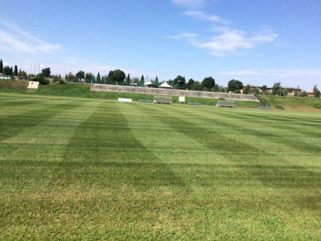 giardinaggio e manutenzione di campi da calcio giardini e parchi sommacampagna verona
