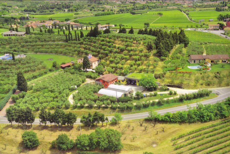 Offerta distillati artigianali Verona - Promozione liquori distilleria artigianale Cavaion