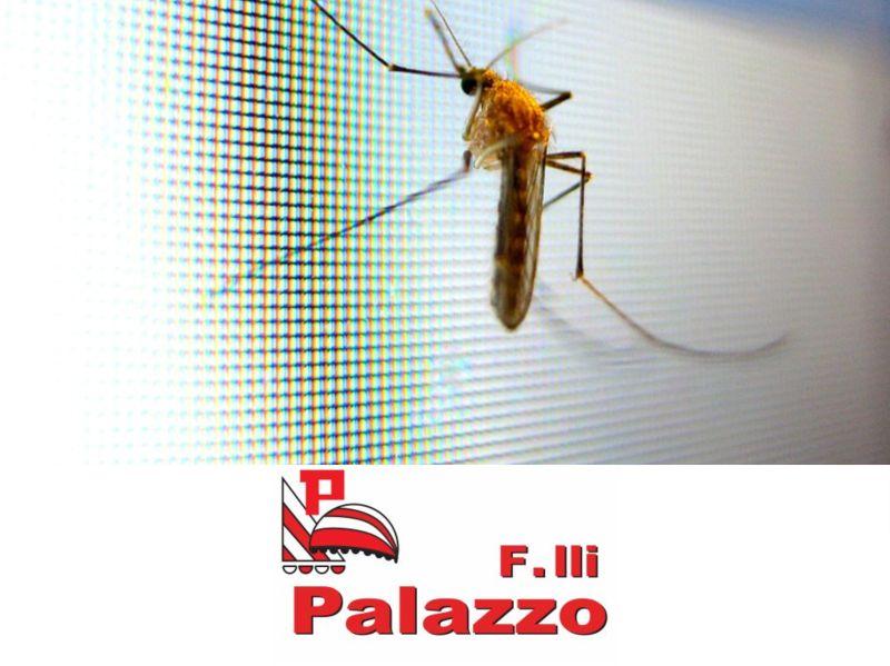 offerta zanzariere varese-promozione tende insetti varese fratelli palazzo