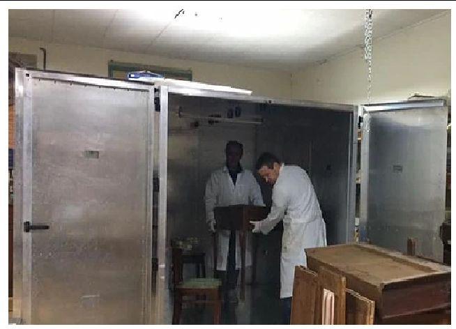 Offerta trattamento antitarlo a microonde - Promozione trattamento antiacaro Bastia Umbra - ReD
