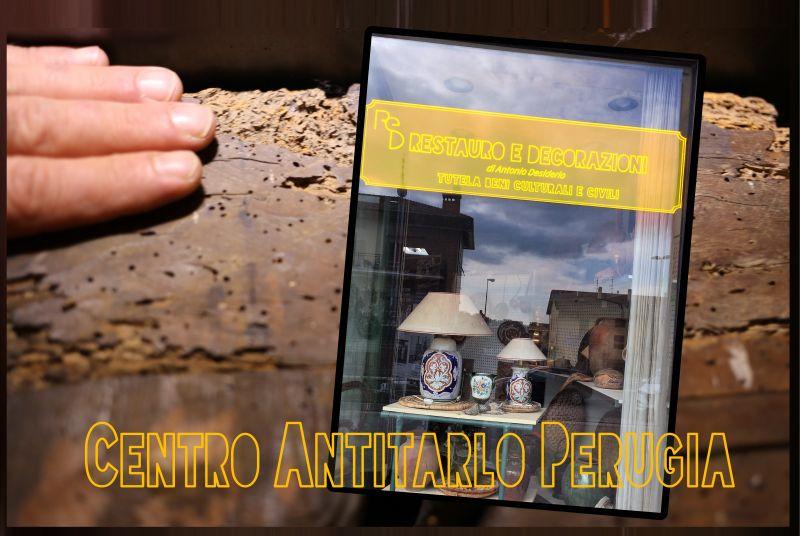 Centro Antitarlo Perugia - offerta recupero manufatti lignei - occasione trattamento antitarlo