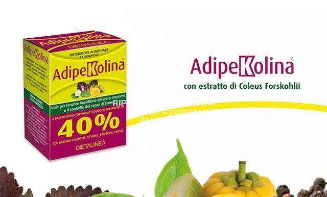 occasione Adipekolina - offerta Forskolina Erbolandia Vicenza