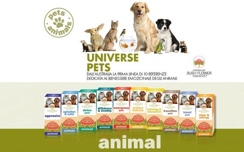 Promozione Universe Pets - Offerta fiori australiani Erbolandia Vicenza