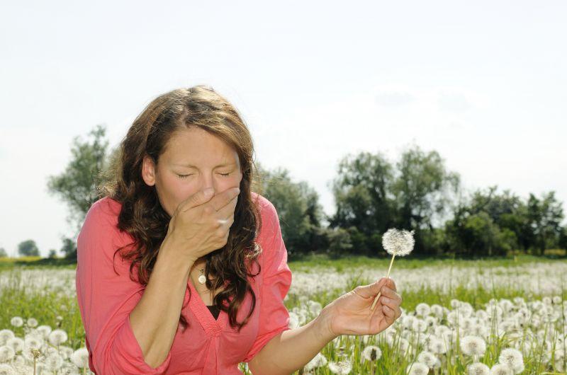 Promozione Allergicum - offerta allergia polline Erbolandia Vicenza