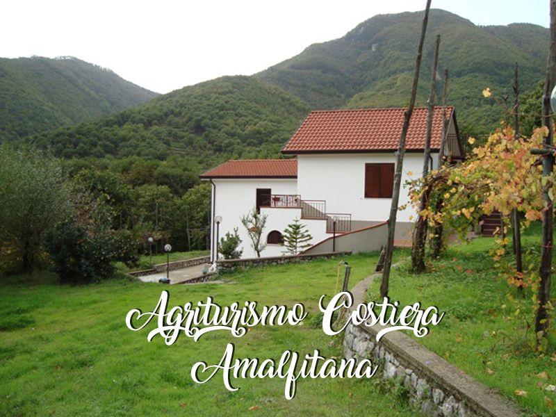 Offerta Agriturismo - Promozione Ristorazione Tramonti  - Agriturismo Costiera Amalfitana