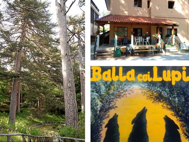 offerta residence altopiano della sila - vacanze parco nazionale della sila