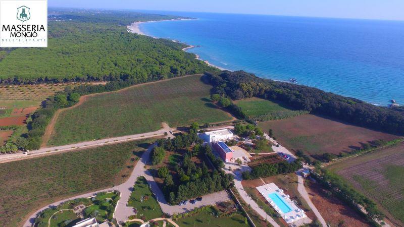 Offre hébergement côte Adriatique - Promotion Masseria vacances oasis Lacs Alimini Puglia