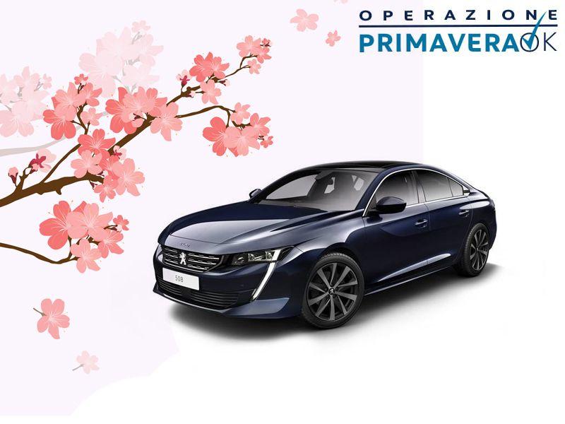 Offerta check up auto Peugeut primavera - Promozione primaveraOK Peugeut Lapelosa
